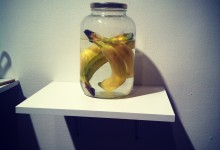Bananas in Water in Jar in Philadelphia First Friday