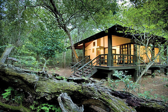 "Phinda Forest Lodge is definitely ""Style Hi"" in the South African bush.  ""Sophisticated seclusion deep in the heart of the forest"""