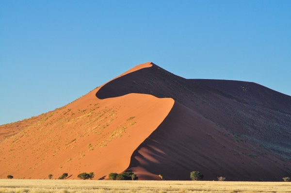 Sossusvlei's Dune #1. The sand is all the same color, it's just that the sun is only hitting it on the left. The affect is so pronounced that standing with your feet on either side of the crest one is burning hot and the other freezing cold.